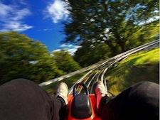 Bobsledding - 5 Slides