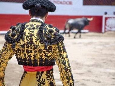 Running With Bulls Experience in Madrid