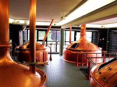 Heineken Brewery Tour Experience in Amsterdam