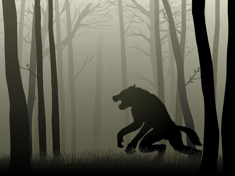 Werewolf Survival Experience in Birmingham