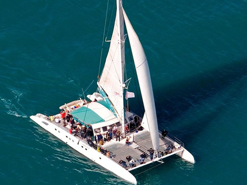 Friday Full Day Catamaran Trip