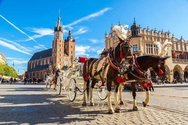 Horse and carriage in Krakow