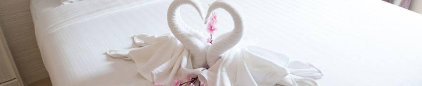 towel swans